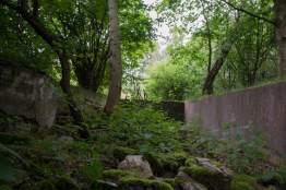 Ruine-